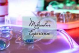 MolecularExperience-petitgrinza.png